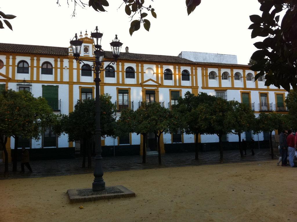 Sevilla Street Scenes - 24