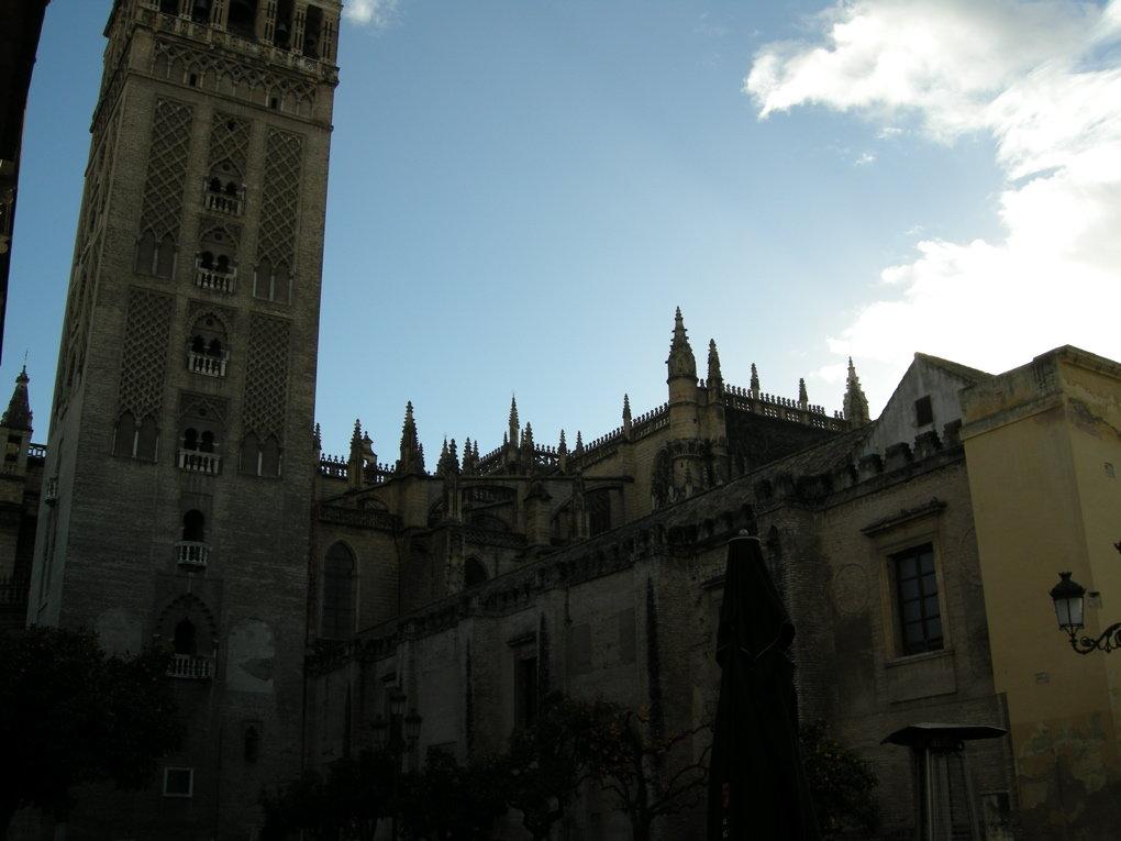 Sevilla Street Scenes - 39