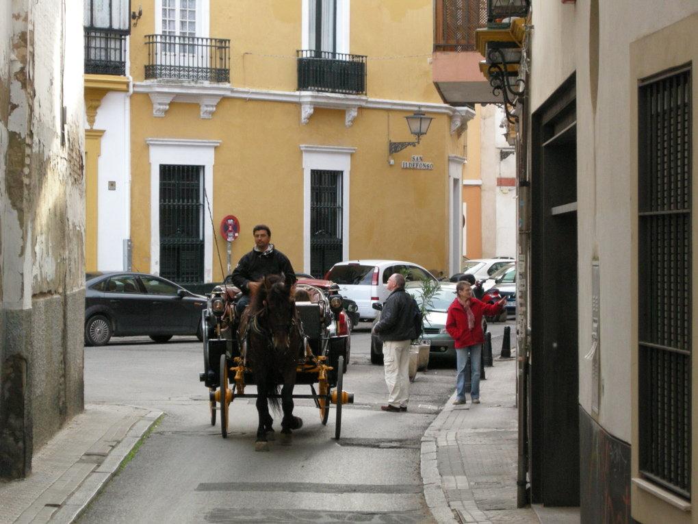 Sevilla Street Scenes - 48