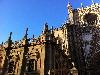 Sevilla Street Scenes - 13