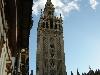 Sevilla Street Scenes - 42