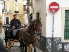 Sevilla Street Scenes - 49